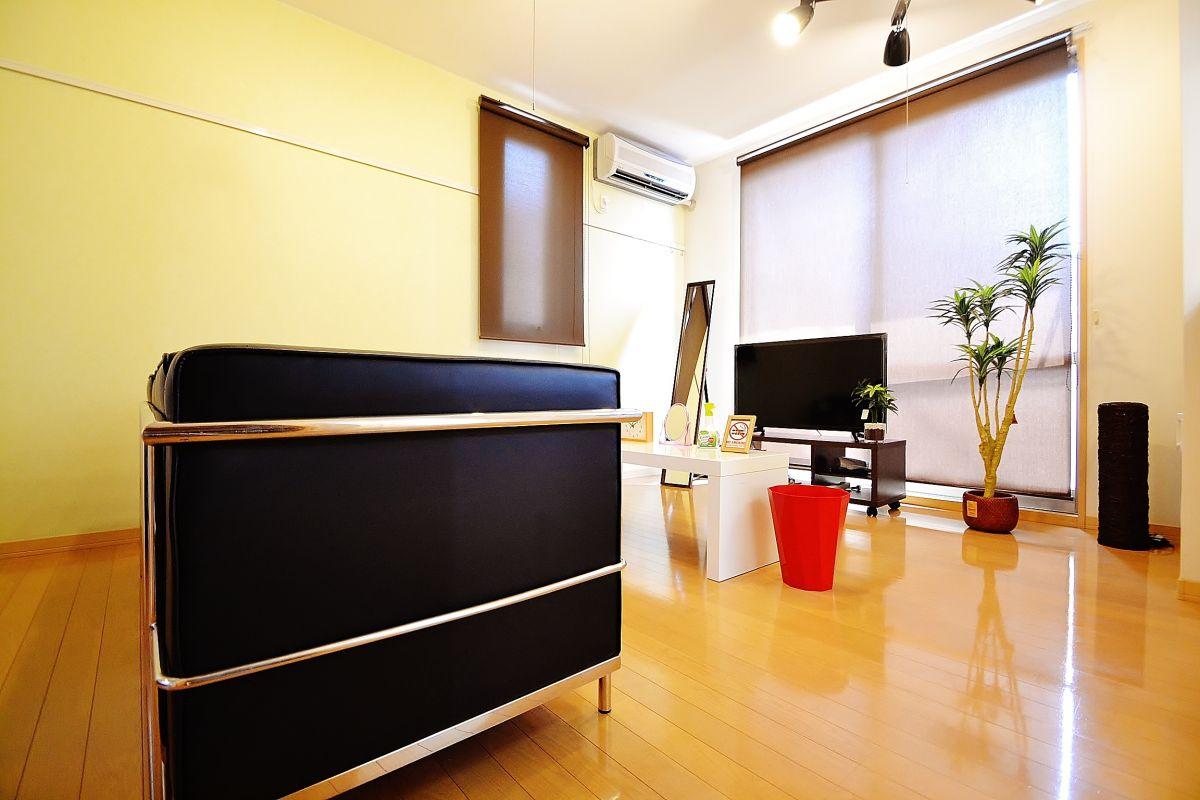 テレビ、ベッド、クリーニングされた清潔な寝具、DVDプレイヤー、掃除機、炊飯器、ケトル、冷蔵庫も完備です♪