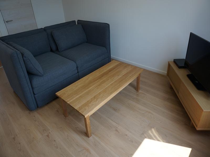 ゆったり広めのソファーベットをご用意。DVD(再生用)もご用意。