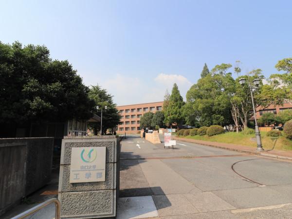山口大学工学部